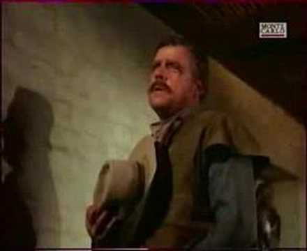 le grand chaparral serie western