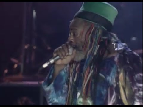 George Clinton & the P-Funk All-Stars - Maggot Brain - Woodstock 99 (Official)