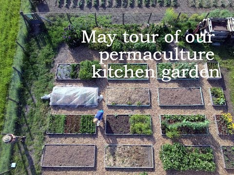 may-tour-of-our-permaculture-kitchen-garden