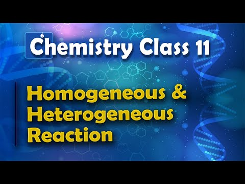Homogeneous and Heterogeneous Reaction - Chemical equilibrium - Chemistry Class 11