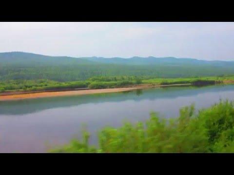 Вид из окна поезда - река Шилка (Забайкальский край)