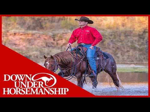 Clinton Anderson: How To Select A Trail Horse - Downunder Horsemanship