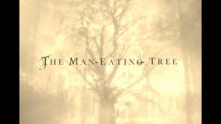 Watch Maneating Tree Instead Of Sand And Stone video