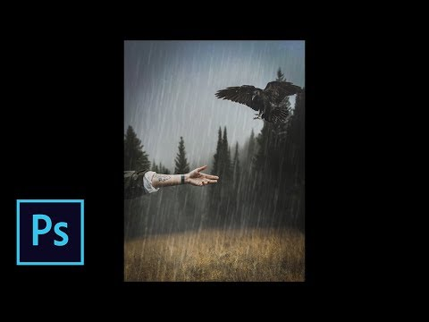 Lost Crow - Photoshop Manipulation Tutorial thumbnail