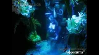 видео «Тигр 2 с бамбуком» - Декоративный фонтан (водопад) по стеклу