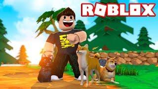 I GOT a ZEBRA DOG! -Roblox Pet Simulator Danish Ep 1