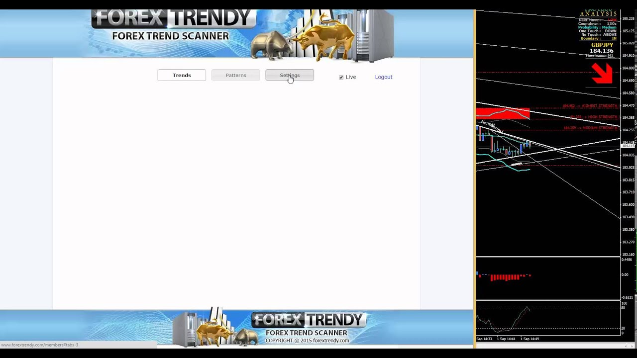 Binary options live stream