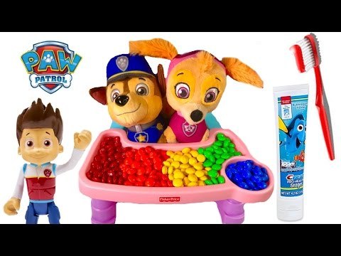 Paw Patrol Skye Chases Ba Puppies Eat Colorful M&Ms Toys Learning Colors for Children