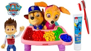 Paw Patrol Skye Chases Baby Puppies Eat Colorful M&M's Toys Learning Colors for Children