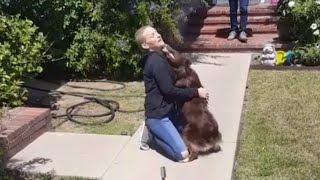 Woman Sees Dog After Month of Chemotherapy