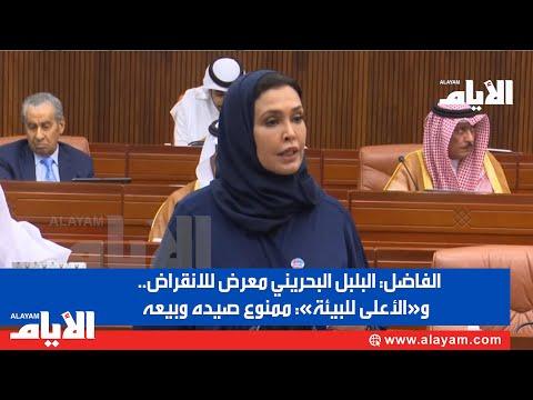 الفاضل: البلبل البحريني معرض للانقراض.. و«الأعلى للبيئة» ممنوع صيده وبيعه  - نشر قبل 2 ساعة