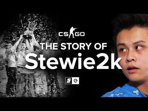 The Story Of Stewie2k: From Pug-Star to Superstar