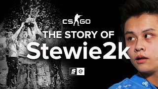 The Story Of Stewie2k: From Pug-Star to Superstar thumbnail