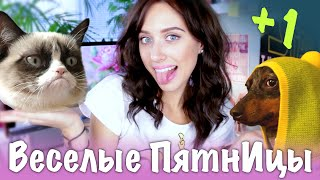 Веселые ПятнИцы: ИЗЮМКА vs. ЛАСТИК / Мои Животные thumbnail