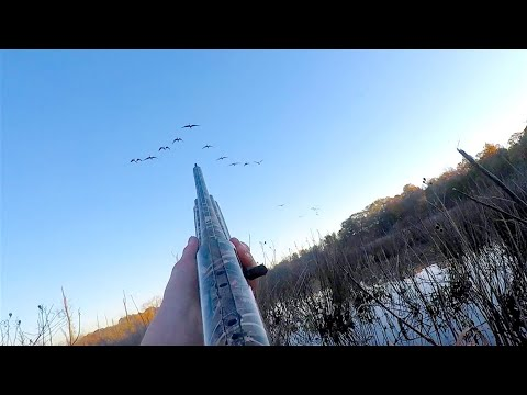 Duck Hunting 2018 - November Season Opener