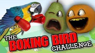Annoying Orange - The Boxing Bird Challenge!