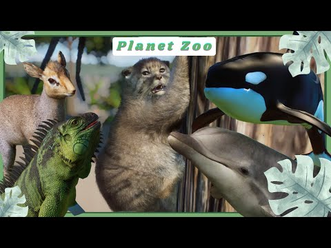 WHALEY Good Mods! - Planet Zoo Mod Showcase |