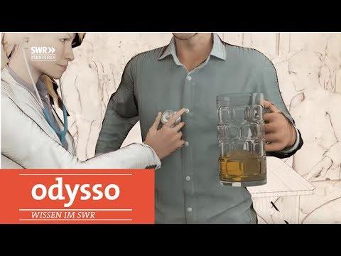 Wie Sich Der Körper Vom Alkohol Erholt   Odysso – Wissen Im SWR