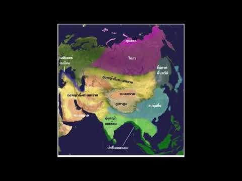 ประวัติศาสตร์เอเชียกลาง