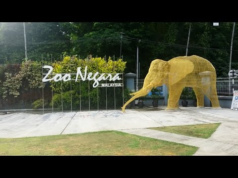 Malaysia National Zoo One Day Trip