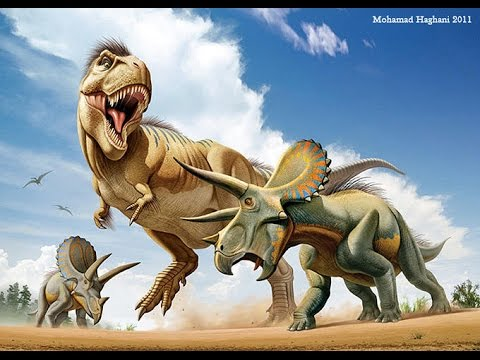 Who Would Actually Win in a Fight? T. rex vs Triceratops ... T Rex Vs Triceratops Fighting