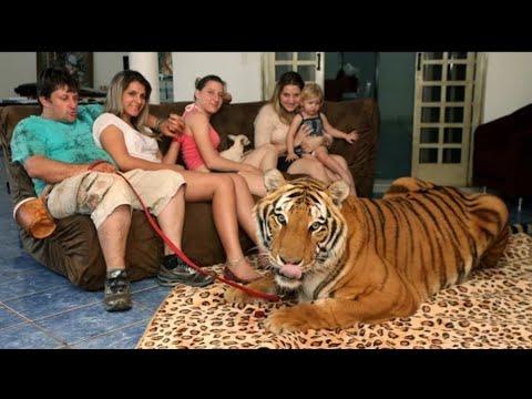 10 खतरनाक जानवर