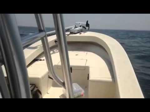 Panga Marine in the Gulf
