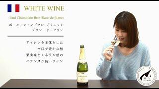 人気ワインエデュケーター「紫貴あき」のテイスティング。2016年1月にお...