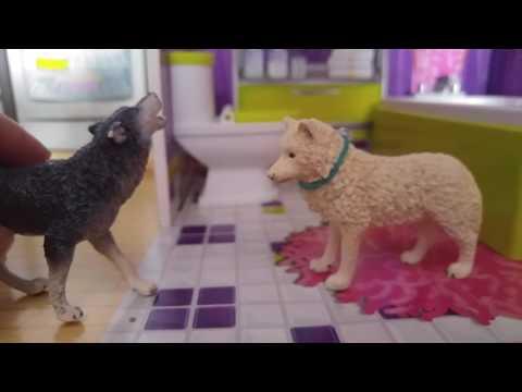 # High School Ep.1 #kristina Kashytska # Wolf Toys #ice Wolf #dog Movie