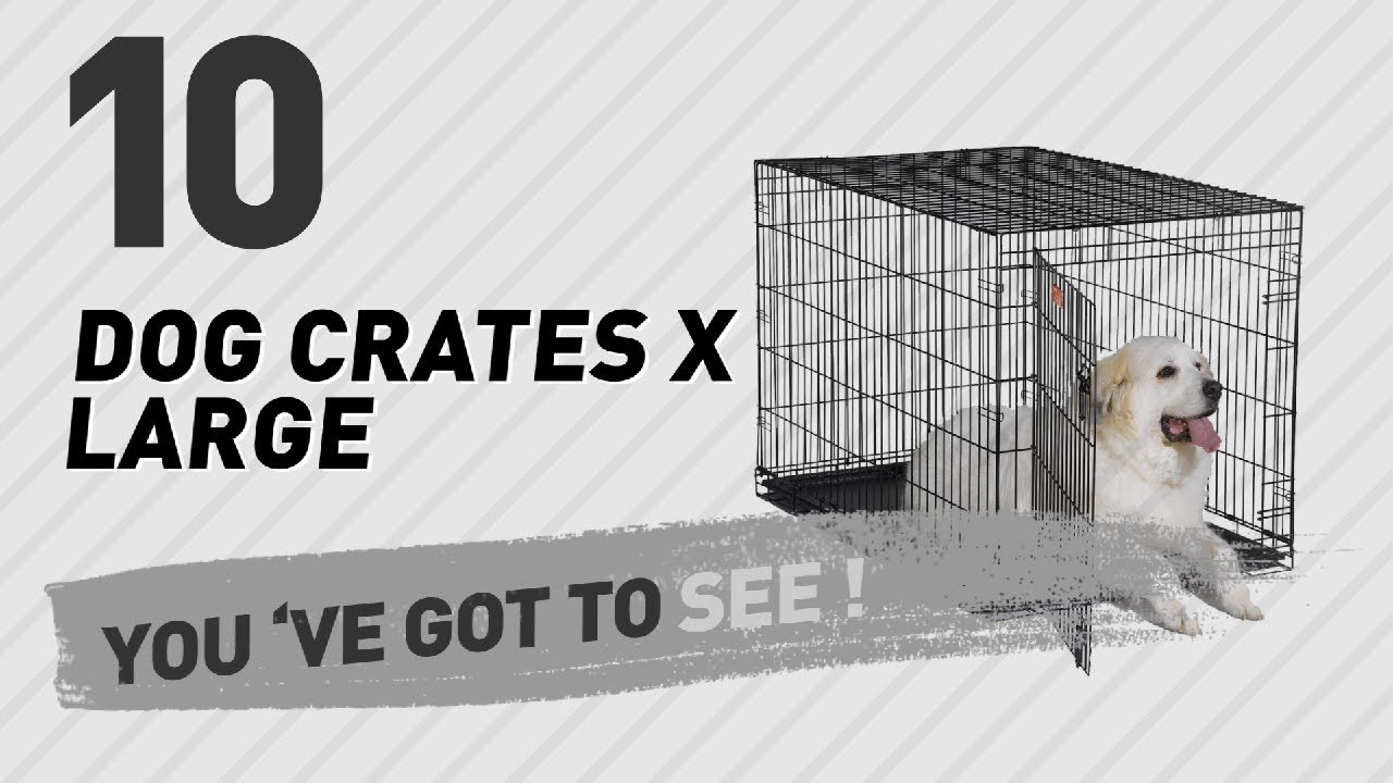 dog crates x large top 10 most popular