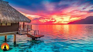 🔴 Relaxing Music 24/7, Calm Music, Meditation Music, Yoga, Healing Music, Sleep, Study Music, Zen