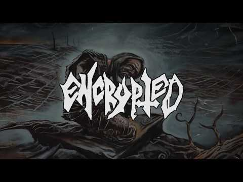 ENCRYPTED - REALMS OF CONFUSION (FULL EP STREAM)