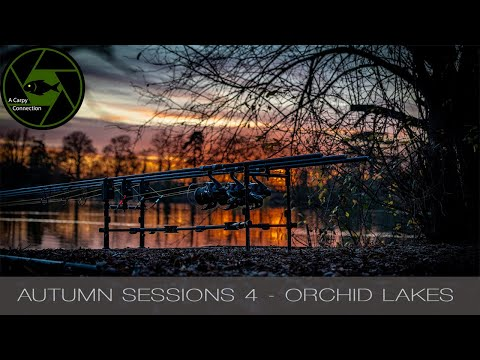 Carp Fishing - A Carpy Connection - Autumn Sessions 4 - Orchid Lakes