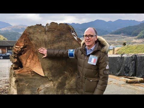 Atelier Séquoïa #2 Reportage TV Asahi - Un artisan d'art au Japon