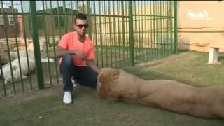 سعودي يعيش بين حيوانات مفترسة في الرياض