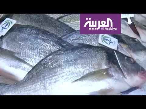 أسماك من البحر الأحمر إلى الصين  - نشر قبل 23 دقيقة