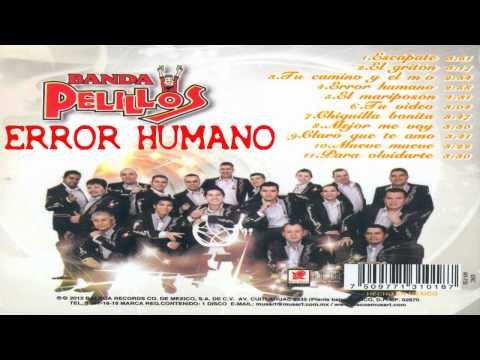 Banda Pelillos Error Humano