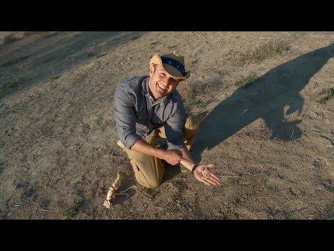 Chet Garner Visits the Mineral Wells Fossil Park!