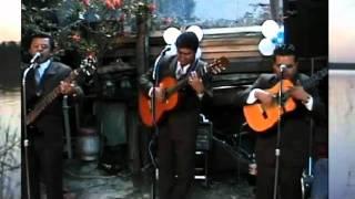 Trio Romanticismo - MEMORIAS MIAS.wmv
