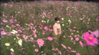 塩乃華織 - 陽だまりの花
