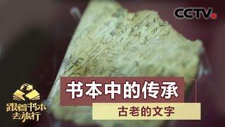 《跟着书本去旅行》 20200602 书本中的传承——古老的文字| CCTV科教