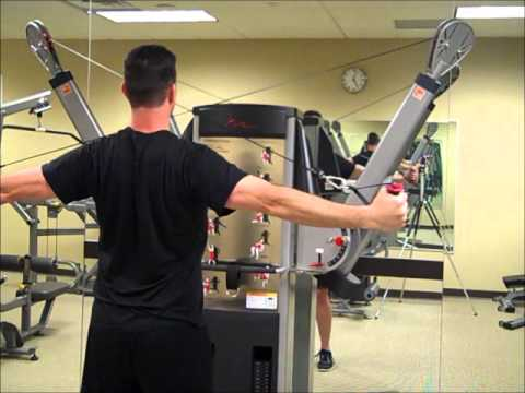 Cable Rear Delt Reverse Fly - YouTube