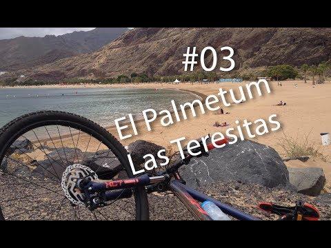 03 - SANTA CRUZ DE TENERIFE EN BICI: Palmetum - Las Teresitas