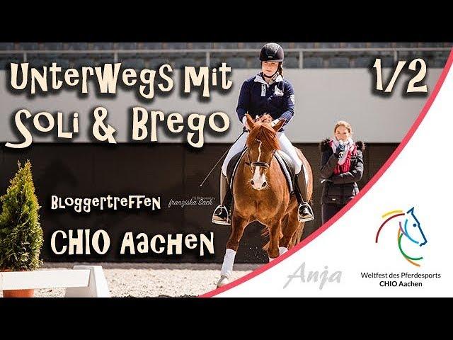 Unterwegs mit Solido & Brego - Dressurunterricht - CHIO Aachen Bloggertreffen Teil 1/2