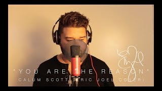 Download Lagu Calum Scott - You Are The Reason (@Eric_Joel Cover) Mp3