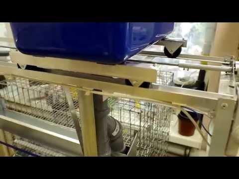 Автоматическая кормушка для перепелов