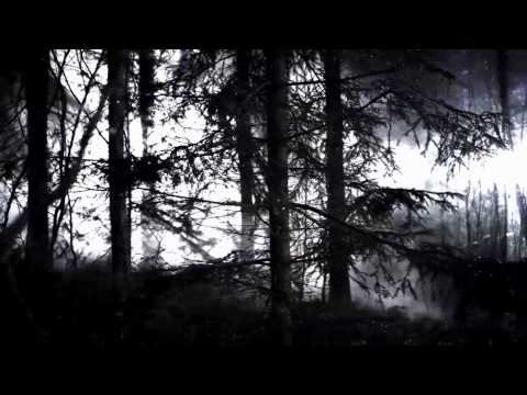 iamamiwhoami - In Concert [live from 16.11]