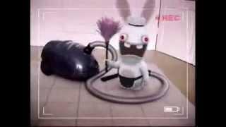 Сумашедшие кролики из Киентуки