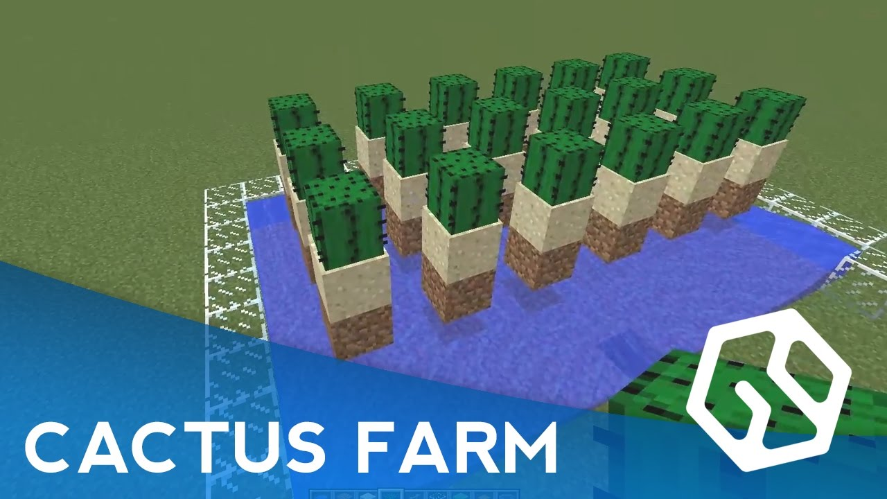 Most Efficient Cactus Farm Design How To Make An Automatic Cactus