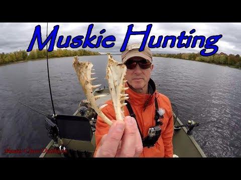 Muskie Fishing Saint John River New Brunswick Canada Sept/Oct 2018-Underwater Views!